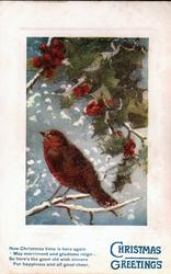 CHRISTMAS GREETINGS holly above robin perched on snowy branch