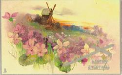 EASTER GREETINGS purple & white violets on hillside, windmill above meadow