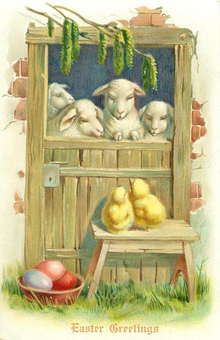 four sheep look out over shed door, catkins above, two chicks & eggs below
