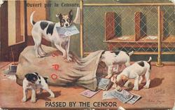 terrier stands on mail bag, censored letter in mouth, three pups play, letters on floor