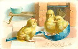 two chicks sit in blue chipped frying pan, another sits on handle, on kitchen floor
