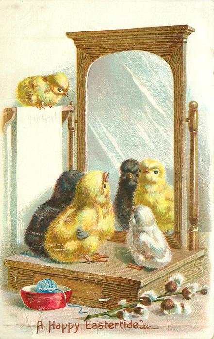 four chicks look into a mirror, wool & pussy-willow front