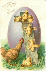 hen watches 6 chicks slide down from large purple Easter egg, grass below