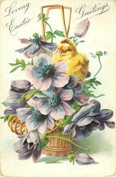 LOVING EASTER GREETINGS one chick among purple anemones in wicker basket