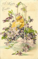A HAPPY EASTER one chick among violets in white basket