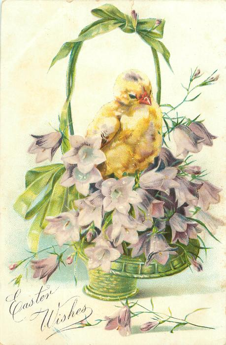 EASTER WISHES chick perched on top of purple harebells in green wicker basket