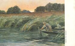 """AMONG THE RUSHES."""
