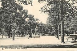 THE AVENUE  man sitting on park bench