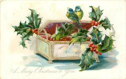 A MERRY CHRISTMAS TO YOU, holly around two blue-tits perched on jewel box
