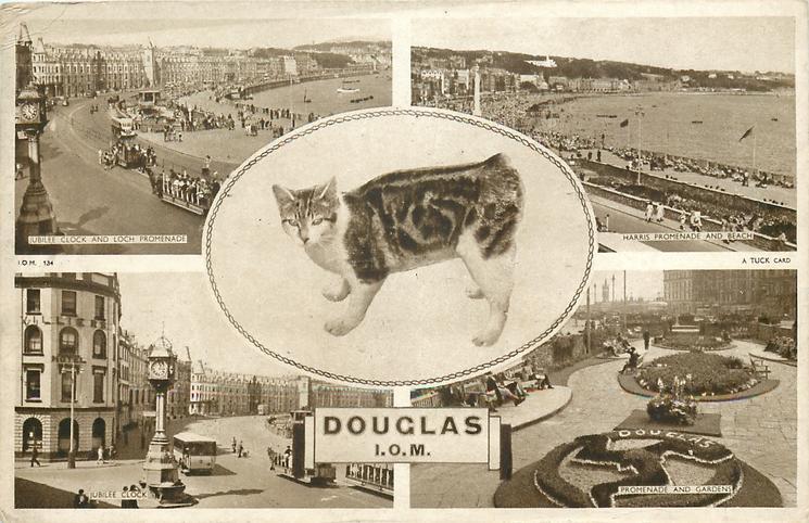 "DOUGLAS I.O.M. 5 insets  JUBILEE CLOCK AND LOCH PROMENADE/HARRIS PROMENADE AND BEACH /manx cat/JUBILEE CLOCK/ PROMENADE AND GARDENS or ""THE LEGS OF MAN"" FLOWER BED"