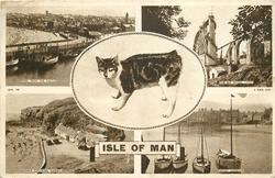 ISLE OF MAN, 5 insets  PEEL FROM THE CASTLE/ THE BIG WHEEL, LAXEY/ manx cat/ MANX COTTAGES, NIARBYL/ RAMSEY HARBOUR