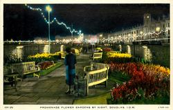 PROMENADE FLOWER GARDENS BY NIGHT, DOUGLAS I.O.M.