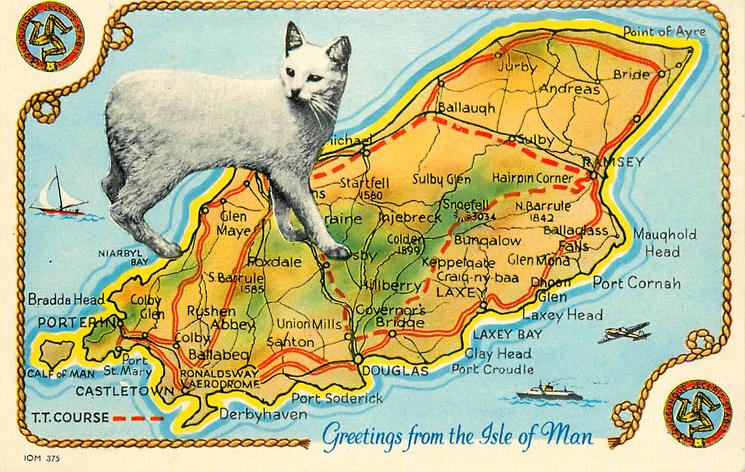 GREETINGS FROM THE ISLE OF MAN map of T T  COURSE, manx cat