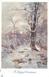 A HAPPY CHRISTMAS  snow scene, very distant man & dog distant on path to left of large tree, central sun