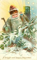 A BRIGHT AND HAPPY CHRISTMAS grey coated red hatted Santa stands behind snow covered conifer branches doll in pack
