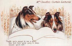 "collies ""CAUDLE, YOU'RE ENOUGH TO VEX  A SAINT! NOW DON'T THINK YOU'RE GOING TO SLEEP; BECAUSE YOU'RE NOT!"""