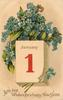 WITH BEST WISHES FOR A HAPPY NEW YEAR  forget-me-nots above calendar  image***