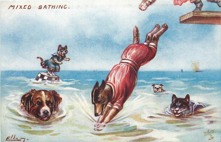 dog in red costume diving from springboard, two dogs and a cat swimming towards him, another cat about to jump