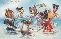 three cats and two dogs dancing in ring, with a third dog waving seaweed in the background