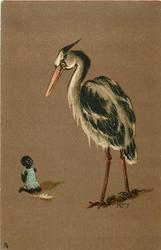 small black child on knees left, large stork to right looks down at child