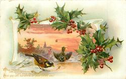 holly above & right of snowy rural inset , two chaffinches *