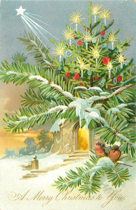 A MERRY CHRISTMAS TO YOU star above lighted tree & evergreen in front of church, snow scene, 2 robins on branch below