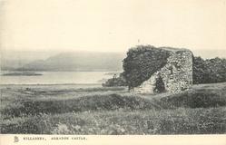 AGHADOE CASTLE