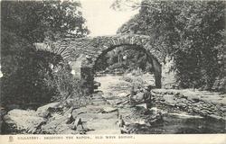 SHOOTING THE RAPIDS, OLD WEIR BRIDGE