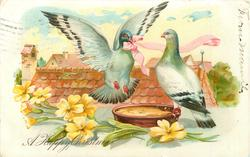 A HAPPY CHRISTMAS, pigeon bringing pink ribbon to mate perched on brown bowl, primroses front