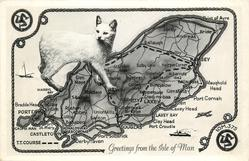 GREETINGS FROM THE ISLE OF MAN map of T.T. COURSE, manx cat