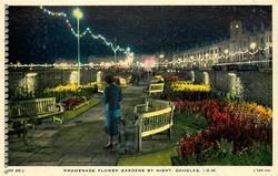 PROMENADE FLOWER GARDENS BY NIGHT