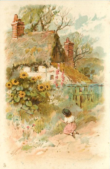 girl kneel to pick flowers in front of cottage with wooden fence, large sunflowers and two pink hollyhocks