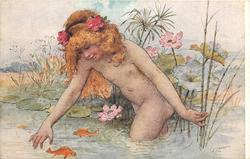 A WATER NYMPH  nude child in water with two goldfish