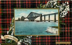 THE FORTH BRIDGE  MACDONALD tartan