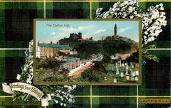 THE CALTON HILL  CAMPBELL tartan