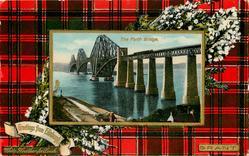 THE FORTH BRIDGE  GRANT tartan
