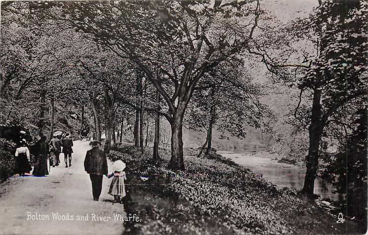 BOLTON WOODS AND RIVER WHARFE