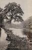 RIVER WHARFE, BOLTON ABBEY