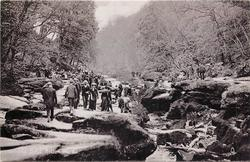 THE STRID, BOLTON WOODS