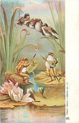 FROGGY WOULD A WOOING GO! (I.)  two frogs on lily pads seranade four birds on a bullrush above