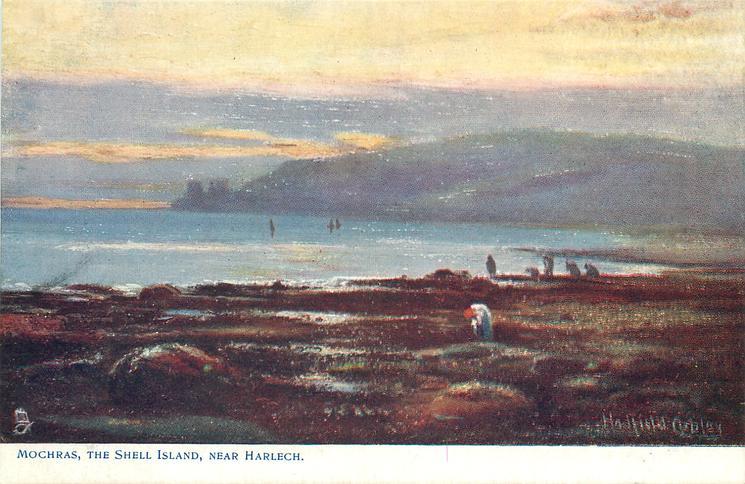 MOCHRAS, THE SHELL ISLAND, NEAR HARLECH