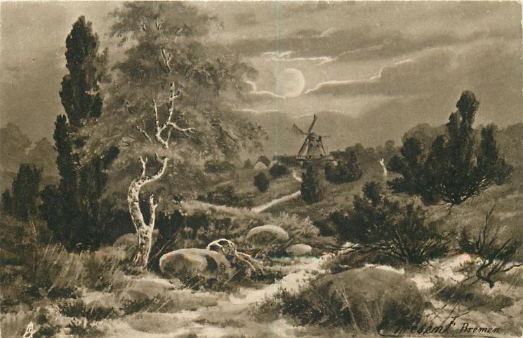 windmill centre horizon, silver birch centre left, prominent rocks & heather around