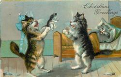 CHRISTMAS GREETINGS  two cats on hind legs bounce kitten between them, another cat in bed behind