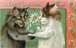 A HAPPY CHRISTMAS  two cats hold paws, daisies abound