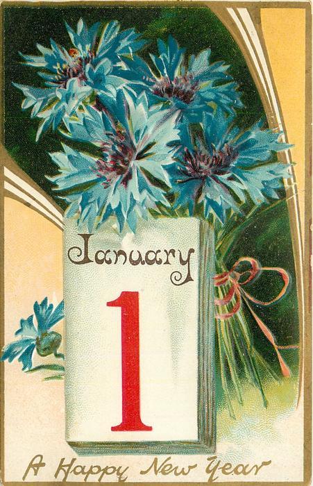 A HAPPY NEW YEAR  blue cornflowers (batchelor's buttons) above calendar below