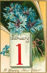 A HAPPY NEW YEAR  blue cornflowers (batchelor's buttons) above calendar below