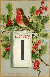 A HAPPY NEW YEAR  robin sits on top of calendar, holly with berries surround