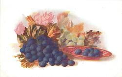 grapes, seven on plate & bunch