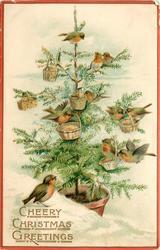 CHEERY CHRISTMAS GREETINGS  snow scene,  many robins on Xmas tree, baskets also