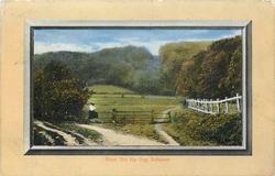 THE ZIG-ZAG, SELBOURNE